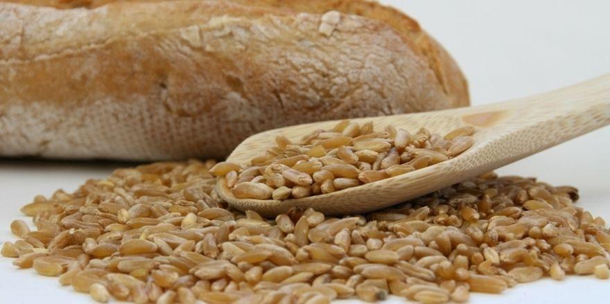 Superfoods wie Chia oder Urgetreide bieten die Chance auf Erfolg, wenn bei den Rohstoffen auf hohe Qualitätsmerkmale gesetzt wird.