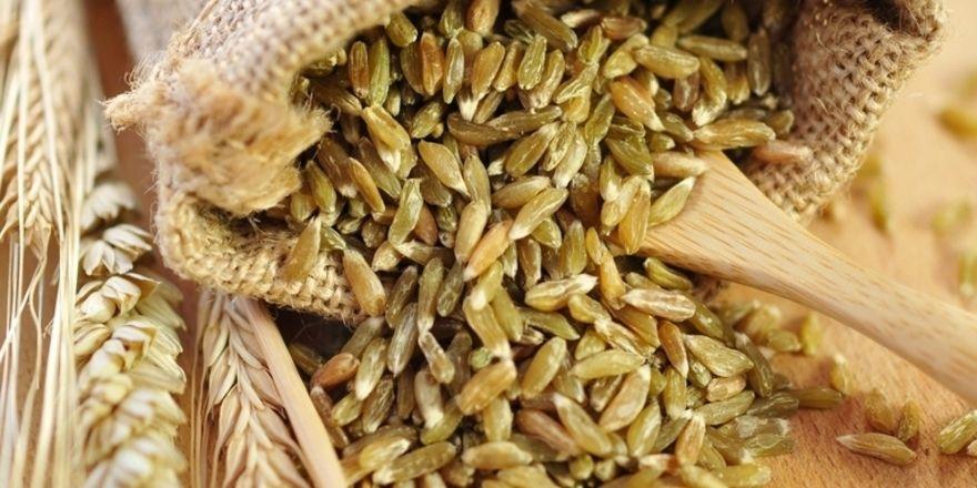 Grünkern ist das Korn des Dinkels, das halbreif geerntet und unmittelbar darauf künstlich getrocknet wird. Früher wurde der Dinkel als Reaktion jahrelanger schlechter Ernten vor der Reife geerntet.