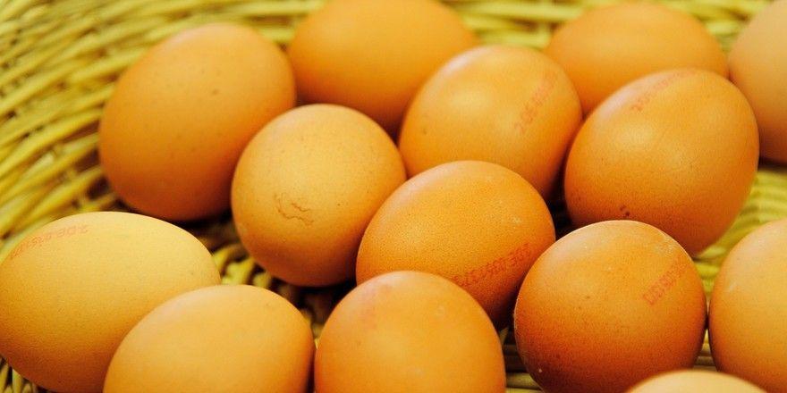 Frische Hühnereier mit Fipronil-Anteilen wurden vernichtet, aber deren verarbeitete Produkte sind wohl in die Lebensmittelkette gelangt.