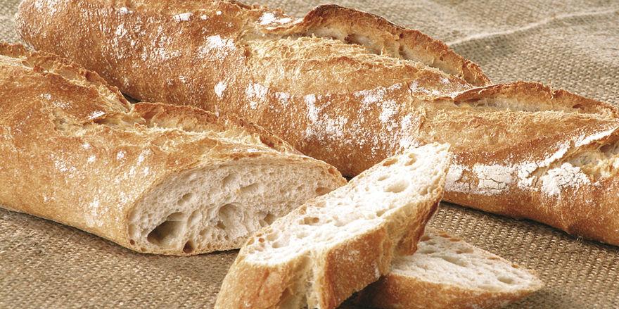 Brot Macht Dumm