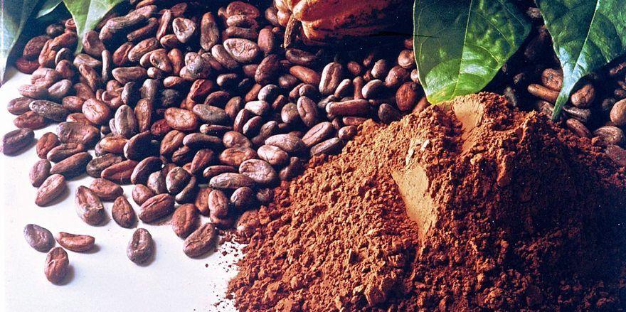 Wird sich mit Berlin der Durchbruch für einen nachhaltigen Kakaosektor verbinden?