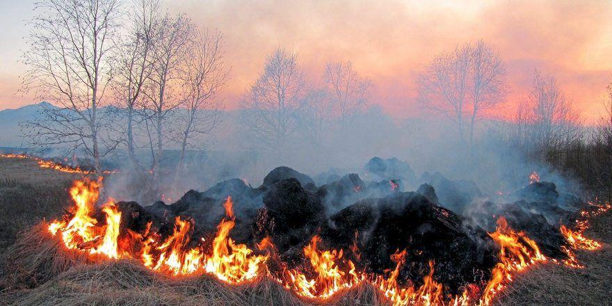 Durch Funken können schnell Flächenbrände entstehen.