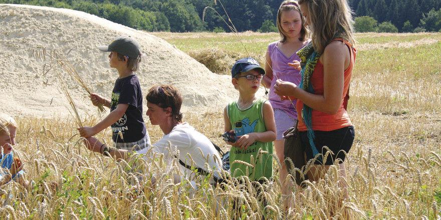 Ran ans Getreide – das war Teil der Wanderung.