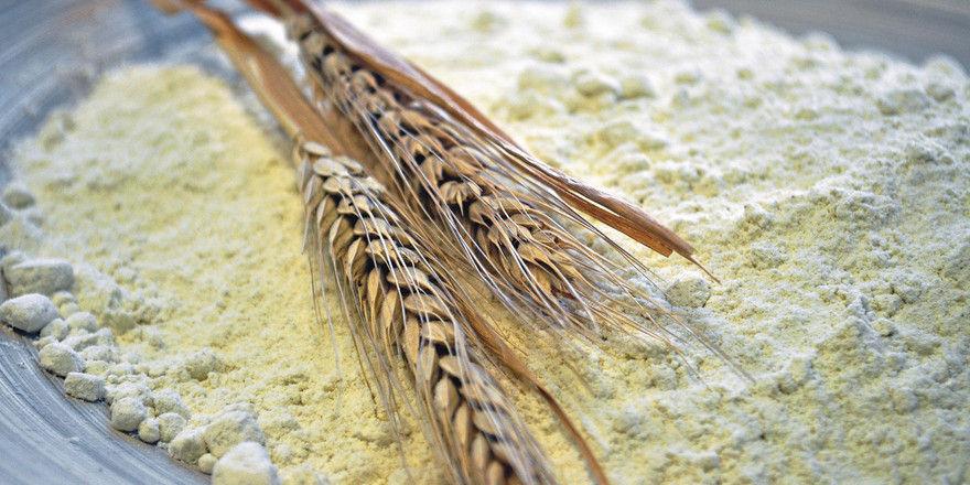 Die goldgelbe Farbe des Mehls ist ein markantes Kennzeichen des neuen Getreides.