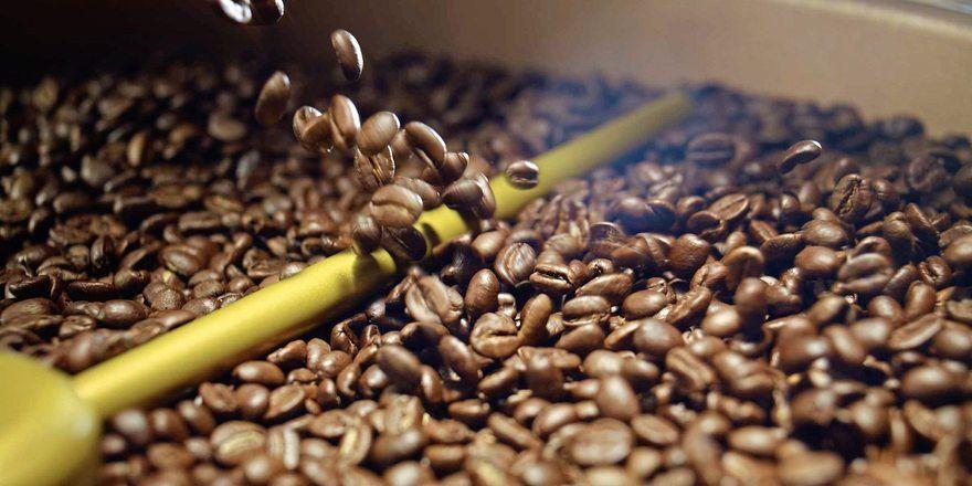 Kaffee ist das beliebteste Getränk der Deutschen, doch es ist fraglich, wie lange es noch genügend Bohnen gibt.