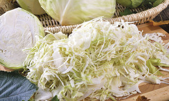 Bei dem IGV-Verfahren wird ganz fein geschnittener Weißkohl zusammen mit Mehl fermentiert.
