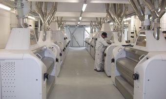 Mehlproduktion in der Hildebrandmühle in Frankfurt.