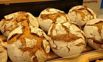 Erhebliche Mängel in der Produktionsstätte haben mit zur Pleite des Großbäckers geführt.