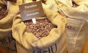 Die Initiative strebt einen fairen und nachhaltigen Handel mit Kakaobohnen an.