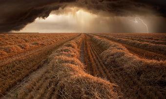 """""""Erntezeit"""" hat Fotograf Franz Schumacher aus Deutschland diese Bild genannt."""