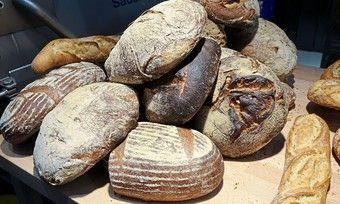 In dunkler Kruste sollen gesunde Stoffe enthalten sein. Das Brot dürfe allerdings nicht verbrannt sein.