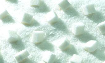Künftig könnte auch poröser Zucker für die Produktion in der Konditorei und Bäckerei ein Thema sein.