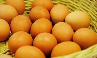 Im vergangenen Spätsommer sind europaweit Eier zurückgerufen und vernichtet worden.