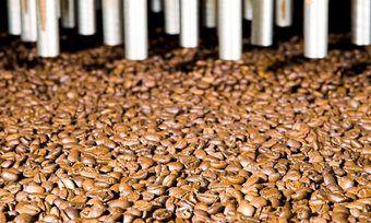 Wissenschaftliche Studie: Kaffeegenuss hilft wohl bei Atemwegserkrankungen.