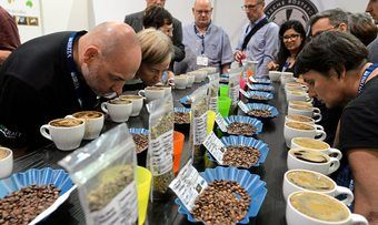 Auf der Coteca steht Kaffee- und Teequalität im Fokus: Dafür stehen auch Verkostungen.