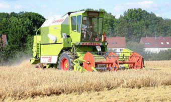 Die Mähdrescher konnten in diesem Jahr etwas mehr Getreide als 2018 ernten.