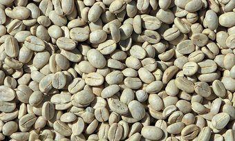 Kaffeegetränken aus ungerösteten Bohnen sollen beim Abnehmen helfen können.