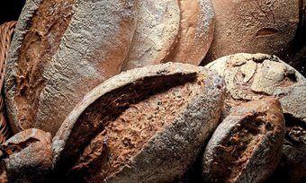 Betriebe können über www.kiezbrot.de den Absatz von Brot und Brötchen erhöhen.