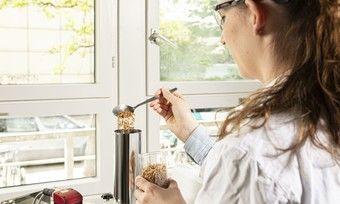 Forscher des KIT untersuchen die Backeigenschaften von Mehl aus Mehlwurmpulver.