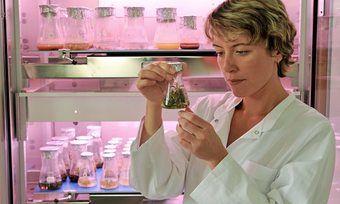 Am Institut für Lebensmitteltechnologie arbeiten Forscher aktuell an der Herstellung gesunder Fettalternativen.